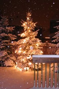 Christmas Decorations - Outdoors