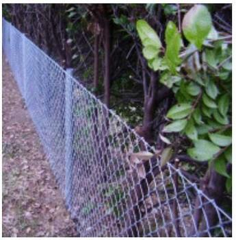 Pipe and Chain-Link Mesh Fence