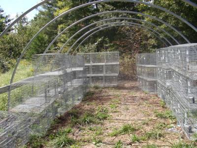 Free Rabbit Hutch Plans - Build a Customized Rabbit Cage on free rabbit signs, free scroll saw plans, free barn plans, free garden plans, free hutch plans, free storage plans, free swing plans, free cabin plans, free plant stand plans, free rabbit books, free rabbit magazines, free mirror plans, free book case plans, free cabinet plans, free diy projects plans, free toy plans, free shelf plans, free desk plans, free cart plans, free rabbit wallpaper,