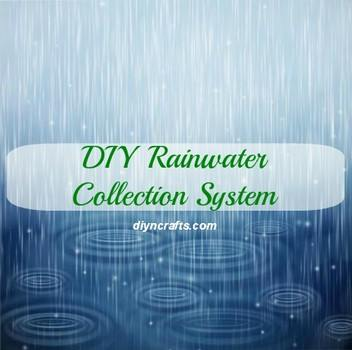 Build a DIY Rainwater Collection System