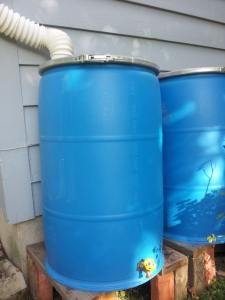 Simple, Inexpensive Rain Barrel to Build