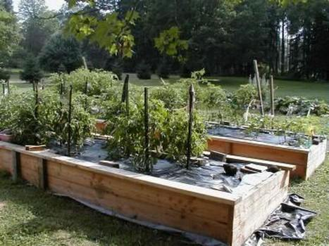 A Planting Bed